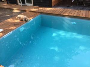 zwembad-grijze-folie-1